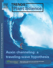 Trends in Plant Science September 2007